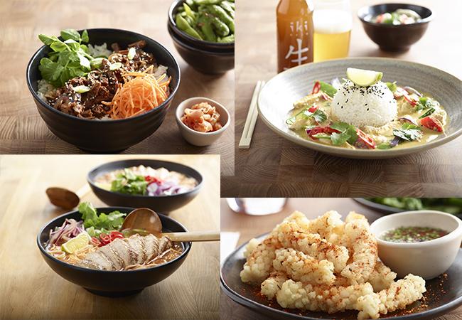 wagamama-bergamo-oriocenter-cucina-giapponese-ario-al-serio-piatti