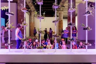 giotto fila colore ufficiale biennale di venezia attivita educational programma