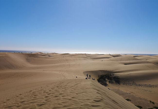 viaggio a gran canaria dune di maspalomas deserto oceano sabbia mare